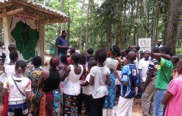 FORÊT: le Parc National du Banco, un véritable atout écologique