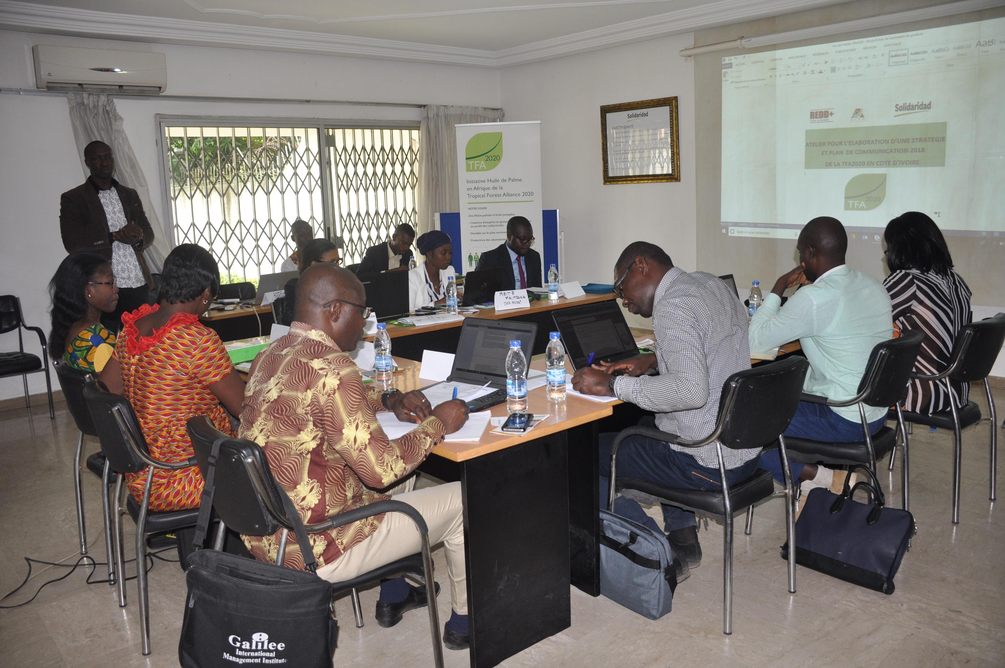 AGRICULTURE : La Côte d'Ivoire se dote d'un plan de communication pour une culture responsable de l'huile de palme