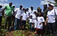 Opération un jour un million d'arbres : 3000 arbres plantés à Bingerville