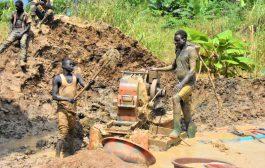 ENVIRONNEMENT : Un réseau d'orpailleurs clandestins démantelé dans la forêt classée de Badénou