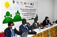 LUTTE CONTRE LES CHANGEMENTS CLIMATIQUES : La Côte d'Ivoire réalise des avancées notables