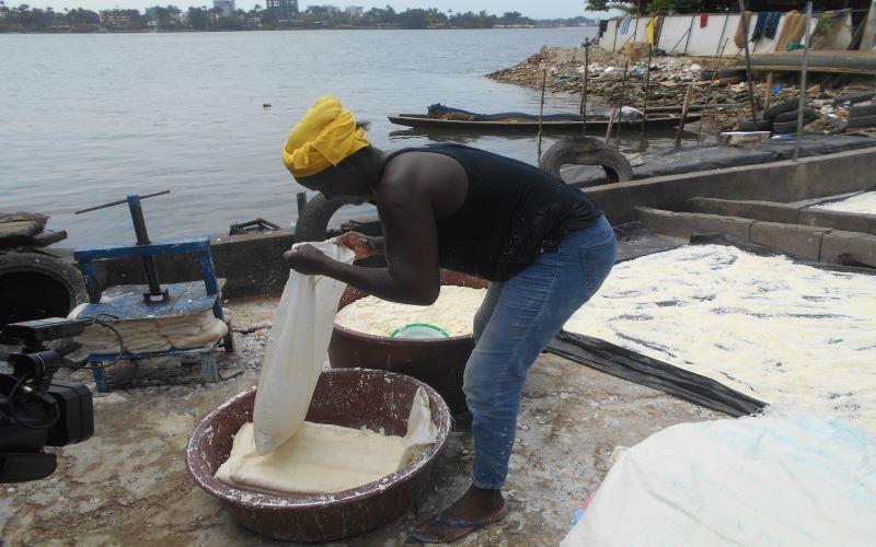 SECURITE ALIMENTAIRE : Des sites de production d'attiéké exposés aux déchets de la lagune Ebrié