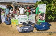 AGROFORESTERIE : Le groupe SIFCA mobilise une cinquantaine de femmes à Ehania