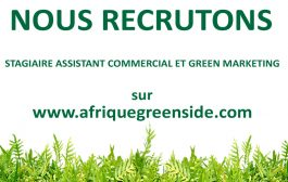 Stage: Assistant Commercial et Green Marketing