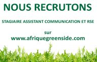 Stage: Assistant Communication et RSE