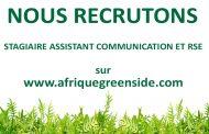 Stage: Assistant Communication et RSE