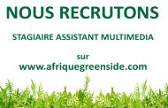 Stage: Assistant multimédia