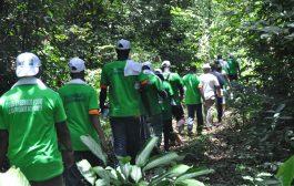 FORET: Une randonnée verte organisée par les