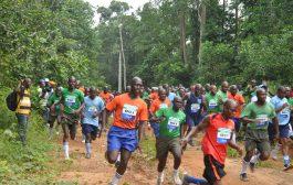 Cross Environnemental: ECOBANK rafle les prix et plante deux hectares de forêts