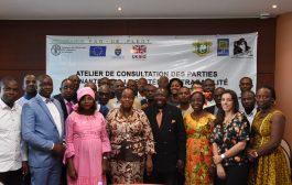 FORET: Un nouveau système de traçabilité du bois ivoirien en vue