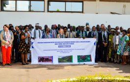 BIODIVERSITÉ: L'UNESCO œuvre pour le retrait du mont Nimba de la liste rouge