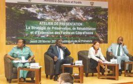 FORET : 616 milliards de F CFA pour reconstituer le couvert forestier ivoirien