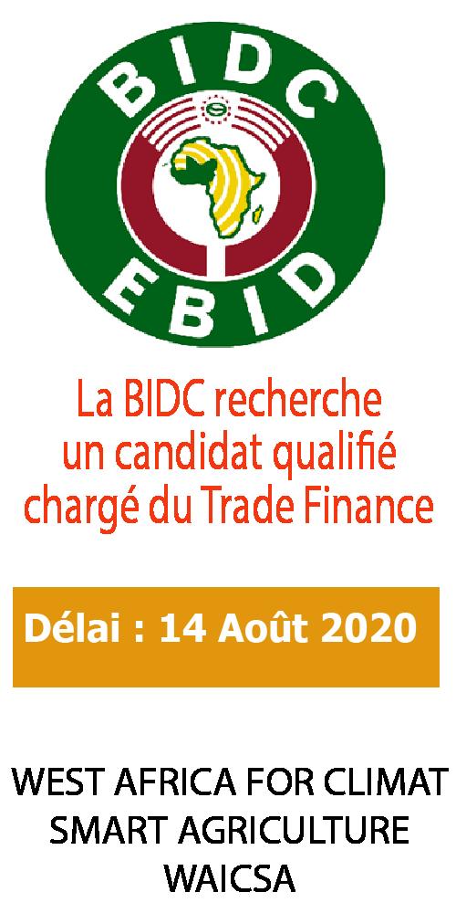 BIDC 120x240