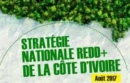 Changement climatique: La stratégie nationale REDD+ de la Côte d'Ivoire