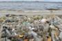 ENVIRONNEMENT : Le grand malaise qui mine les zones marines côtières de la Côte d'Ivoire
