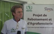 LUTTE CONTRE LA DEFORESTATION : Le groupe SIFCA démontre son intérêt pour l'agroforesterie