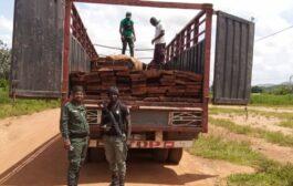 LUTTE CONTRE LA DEFORESTATION : La SODEFOR interpelle un réseau de fossoyeurs de la forêt Ivoirienne