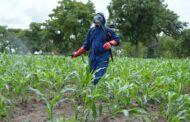ENVIRONNEMENT : Les pesticides, un réel danger pour la planète