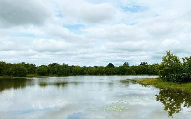 BIODIVERSITE : A la découverte du N'zi River Lodge